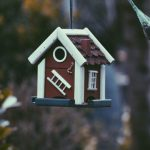 Buying a Property – Roles and Responsibilities Throughout the Purchasing Property